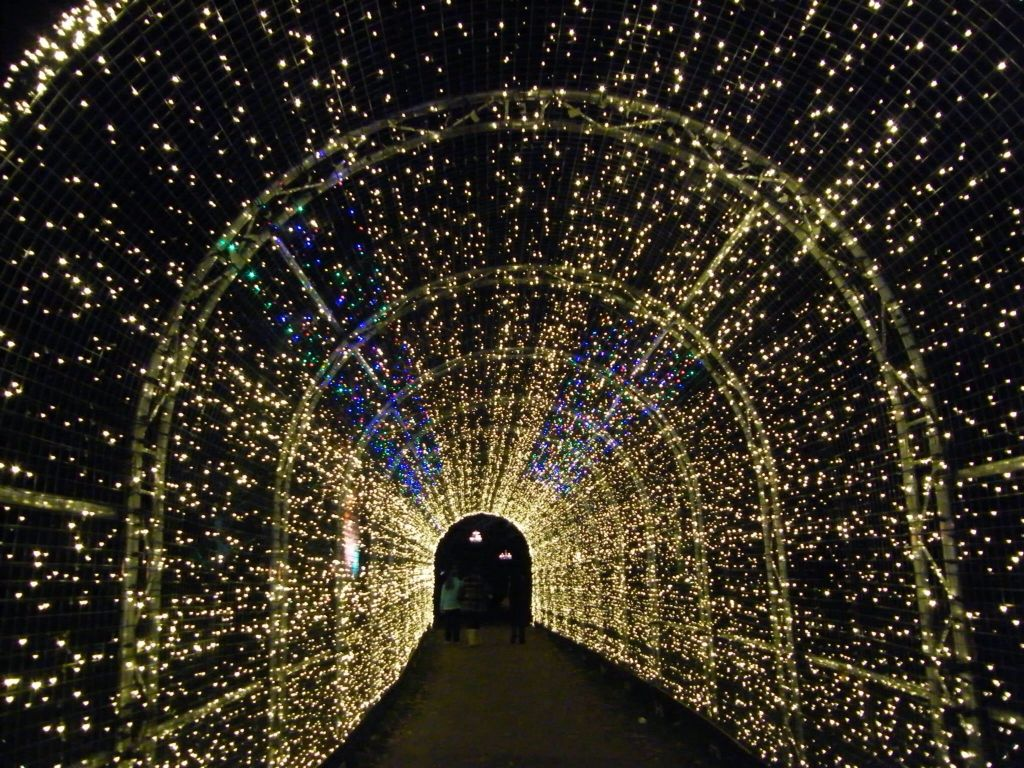 Walkway Of Fairy Lights At Kew Gardens In London As Part Of Their Christmas Lights Event Kew Gardens Fairy Lights Christmas Lights