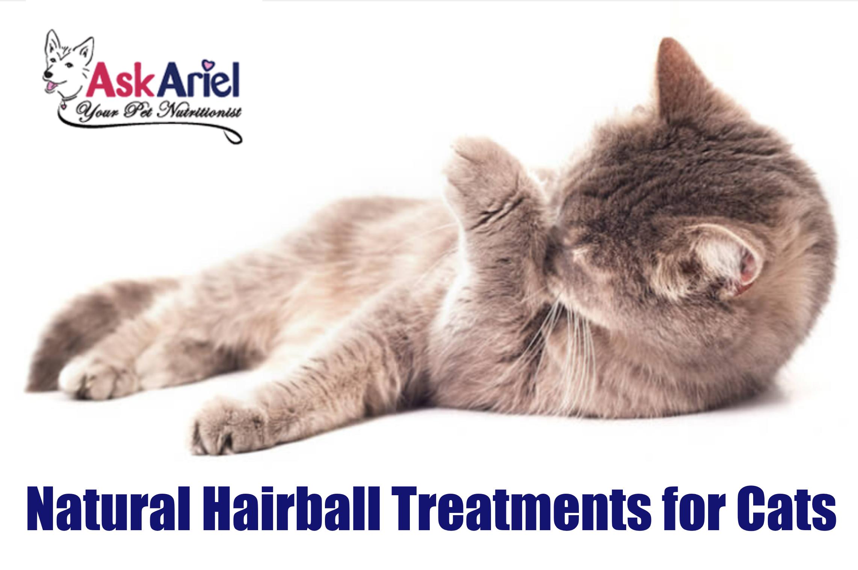 Natural Remedy Cat Diarrhea Cat & Dog Digestive