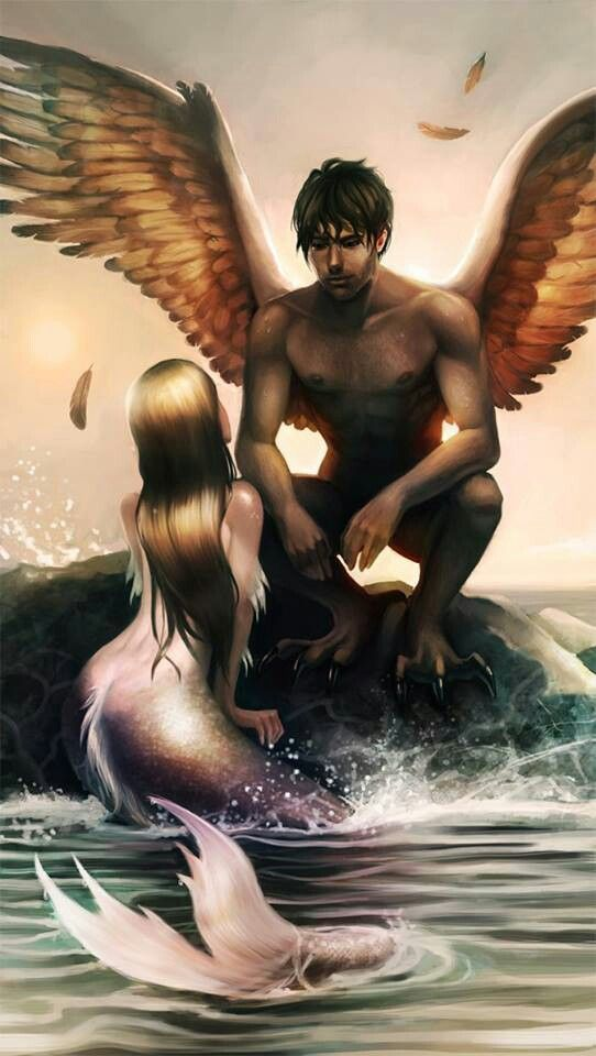 """A female mermaid/siren and a male harpy. """"A bird may love a fish signore, but where would they live?"""""""