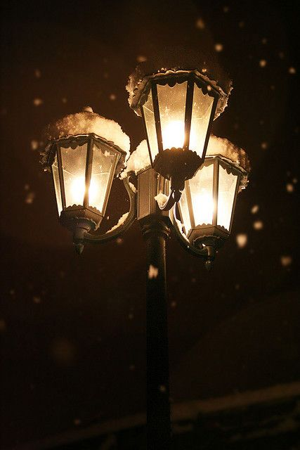 Snow Covered Street Lamps Wonderland