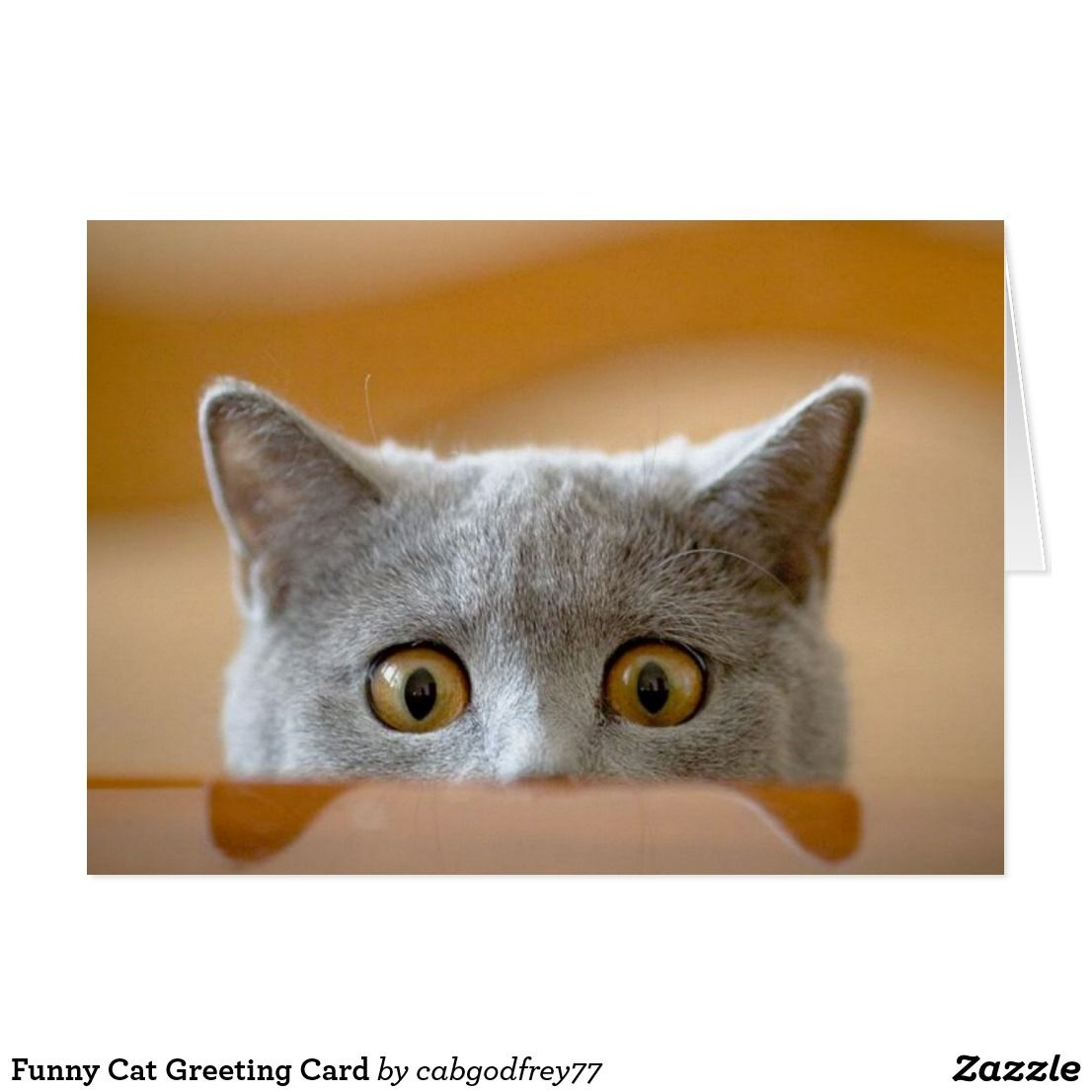 Funny Cat Greeting Card Funny Greeting Cards Pinterest Cat