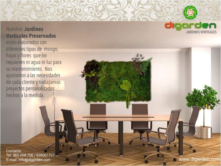 diseño-interior-paredes-musgo-jardin-vertical-estabilizado-foto ...