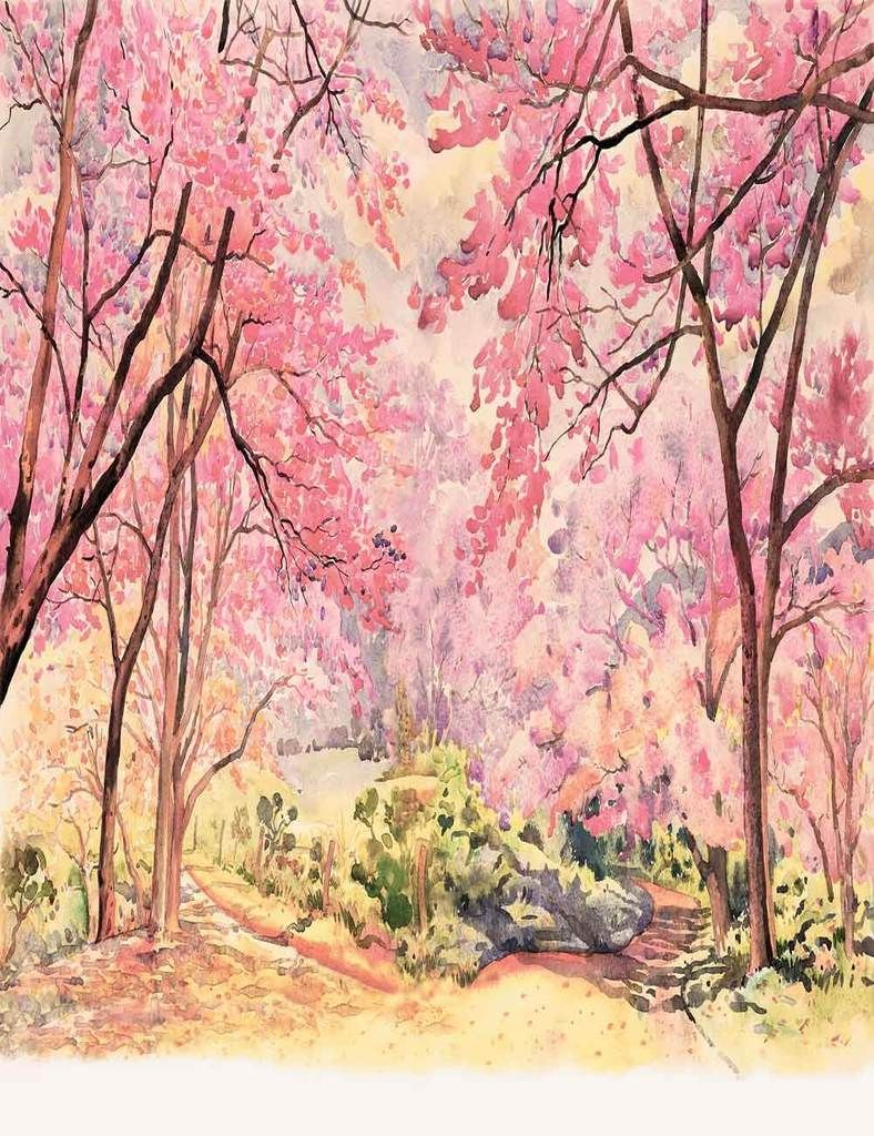 Hand Painted Watercolor Spring Flower Tree Photography Backdrop J