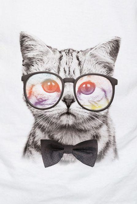Camiseta Infantil Gato Hipster Quadros Pinterest Tapety Koty