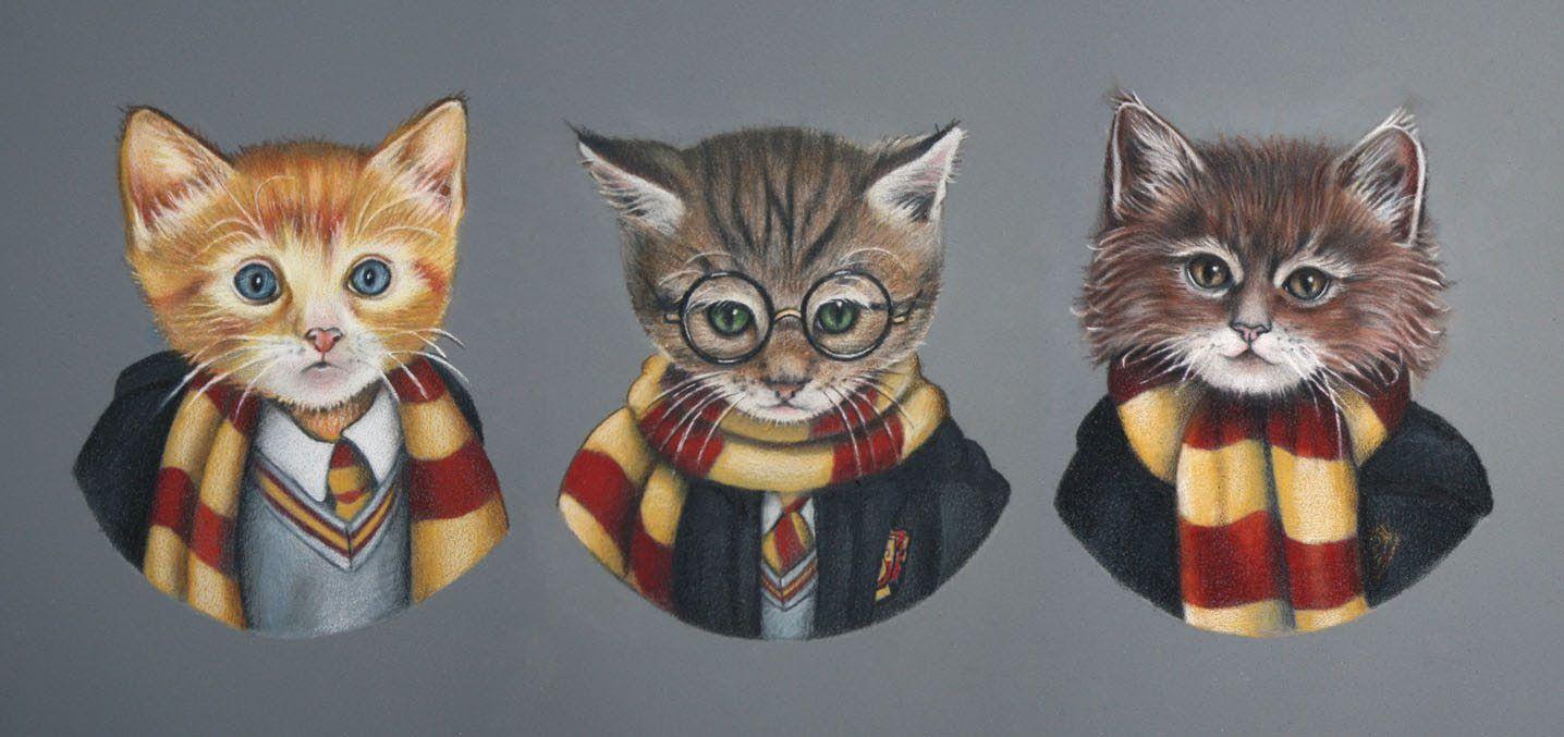 Fanimals (nicolecaulfield) Harry Potter Cat Harry potter