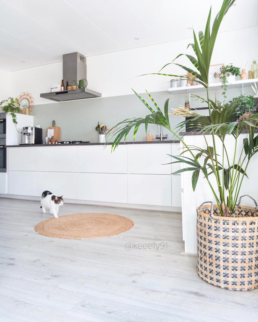 Homeinterior Decorators: Pin On Lattia
