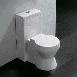 """One Piece Toilet Dual Flush Toilet Modern Bathroom Toilet 28.2/"""" Elario"""