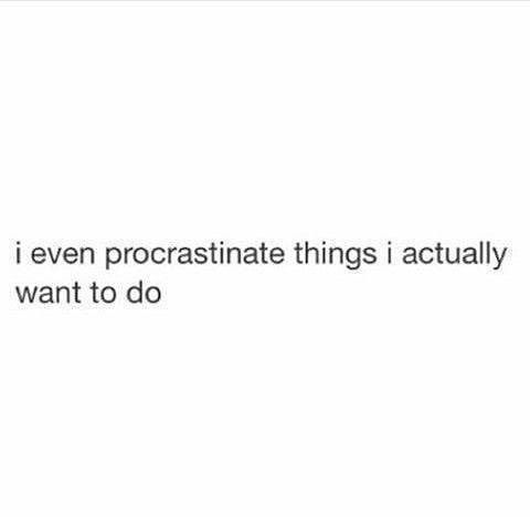 Funny Procrastination Memes Funny Quotes True Quotes Mood Quotes