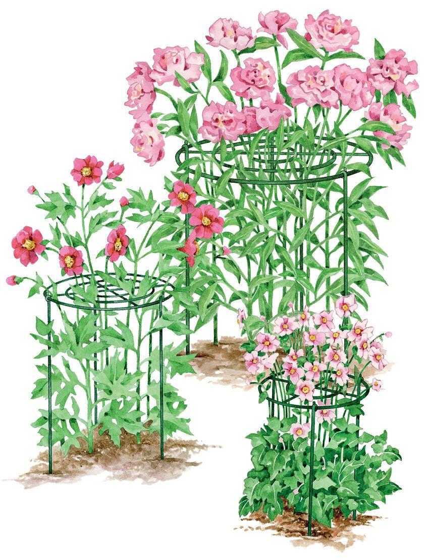 Grow Through Flower Supports Gardener S Supply In 2020 Plant Supports Flower Pot Design Flower Garden