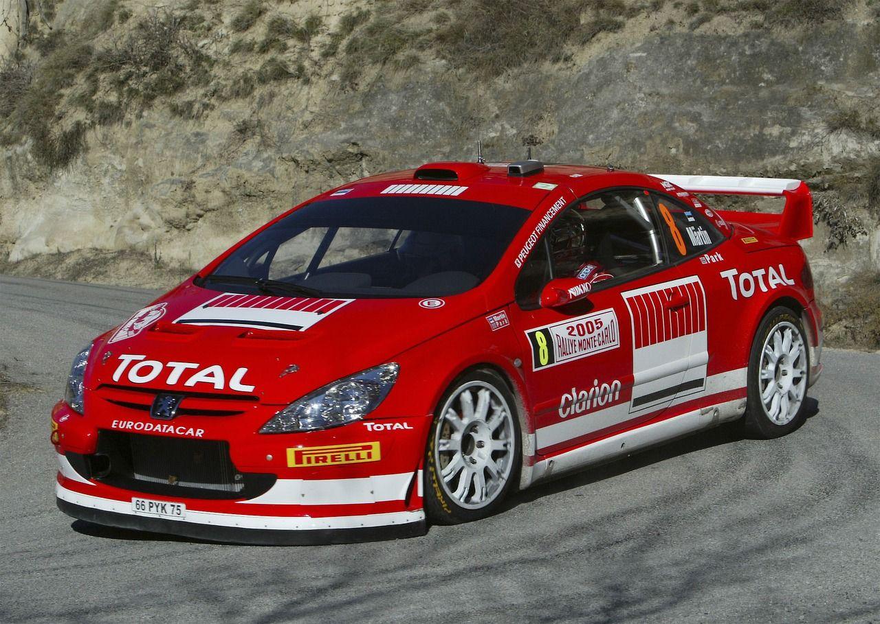 Peugeot 307 WRC rally car …   Auto: Pe…