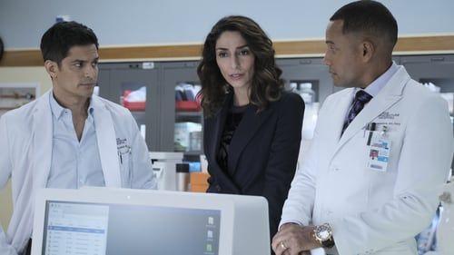 The Good Doctor Season 2 Stream