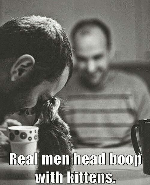 Real men head booping with kittens