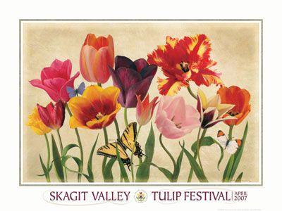 Skagit Tulip Festival Edible Flowers Skagit Tulip Festival Flowers