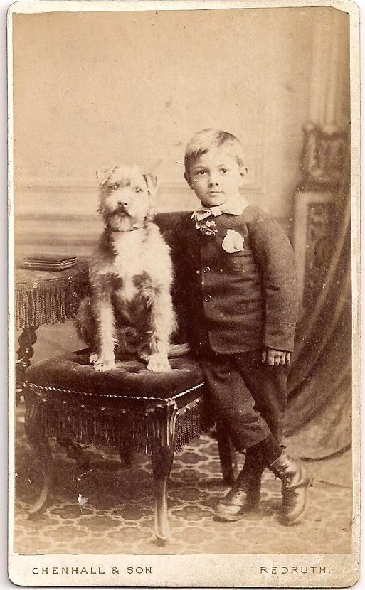 Fine Terrier with His British Boy CDV~A Charming Twosome~Antique Dog Photograph