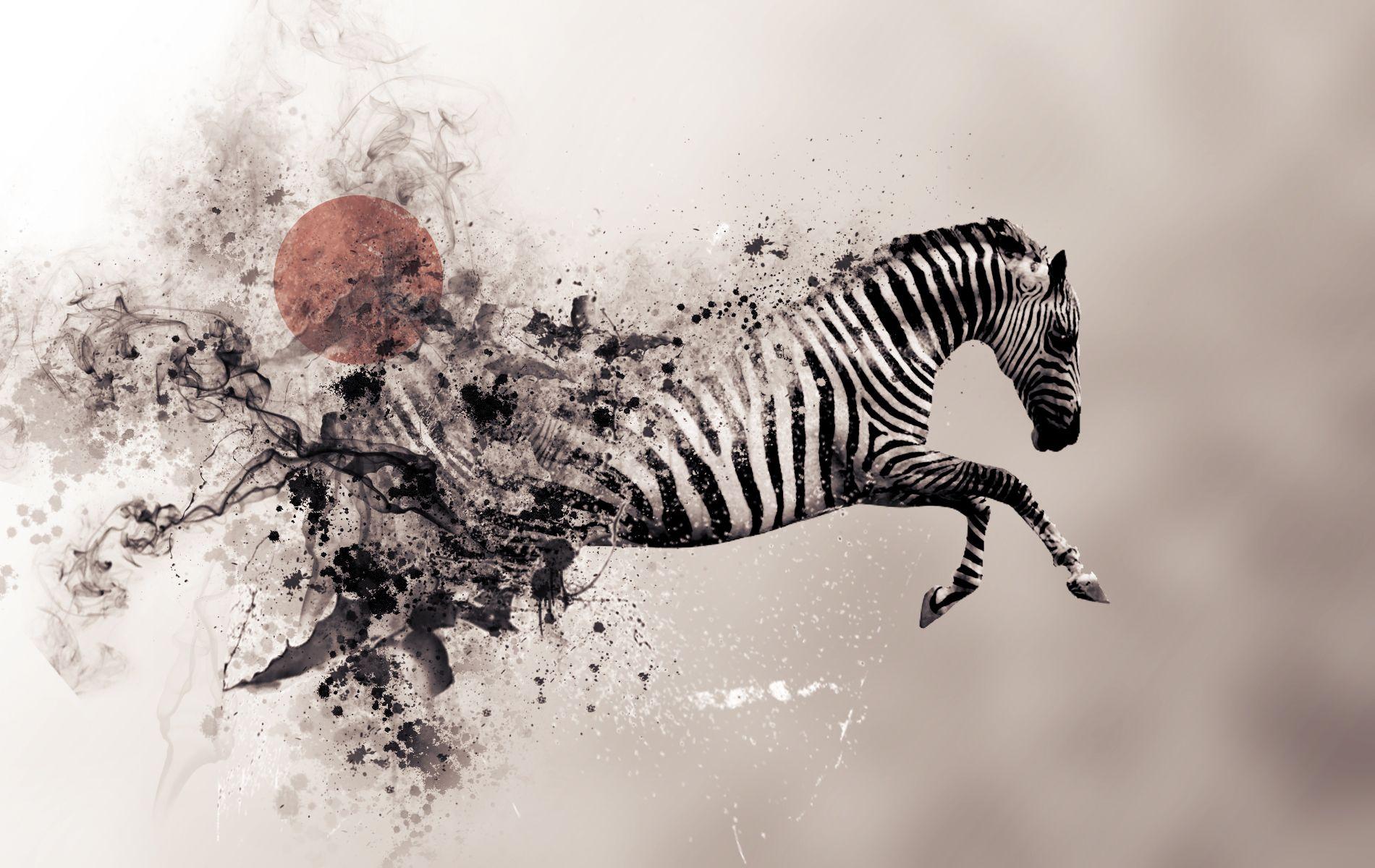 Épinglé par Noëmie Infographiste sur Art   Zebre, Affiche