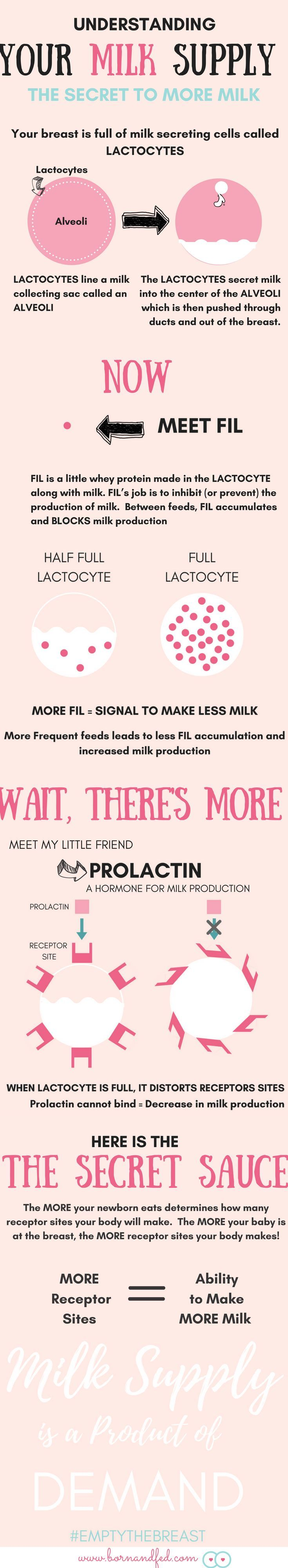 Bornandfed-The Secret To Making More Breast Milk Is -4732