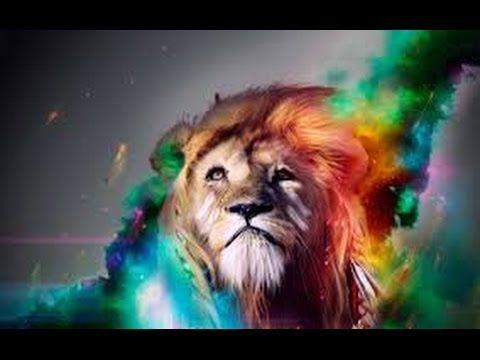 Amazing Top 10 Dubstep Songs Colorful Lion Lion Hd Wallpaper Colorful Lion Art