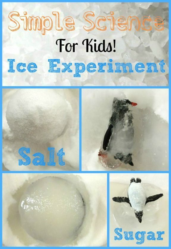 Simple Science Ice Experiment Inner Child Fun Science Experiments Kids Easy Science Kindergarten Science