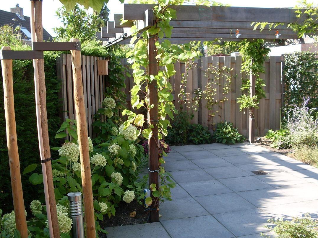 Boompalen en tuinafscheiding van groen ge mpregneerd hout met een pergola van hardhout - Hout pergola dekking ...