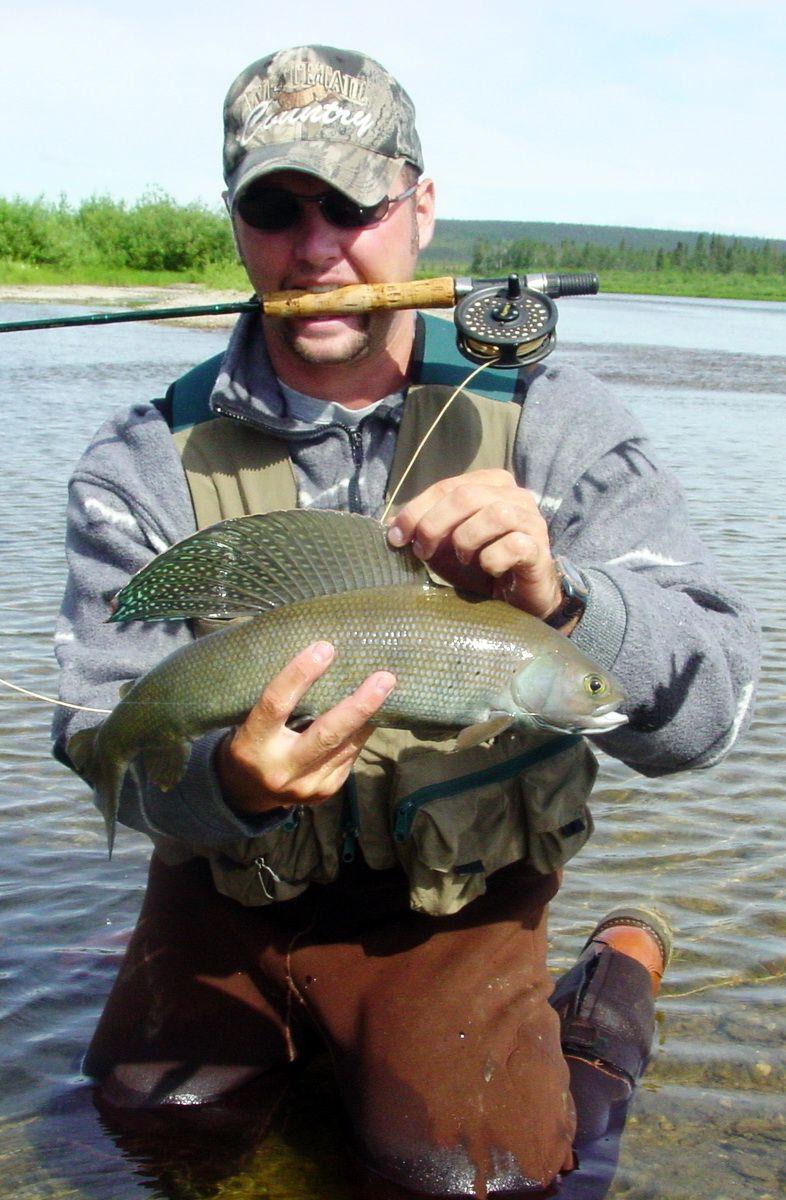 Large Arctic Grayling Рыбалка