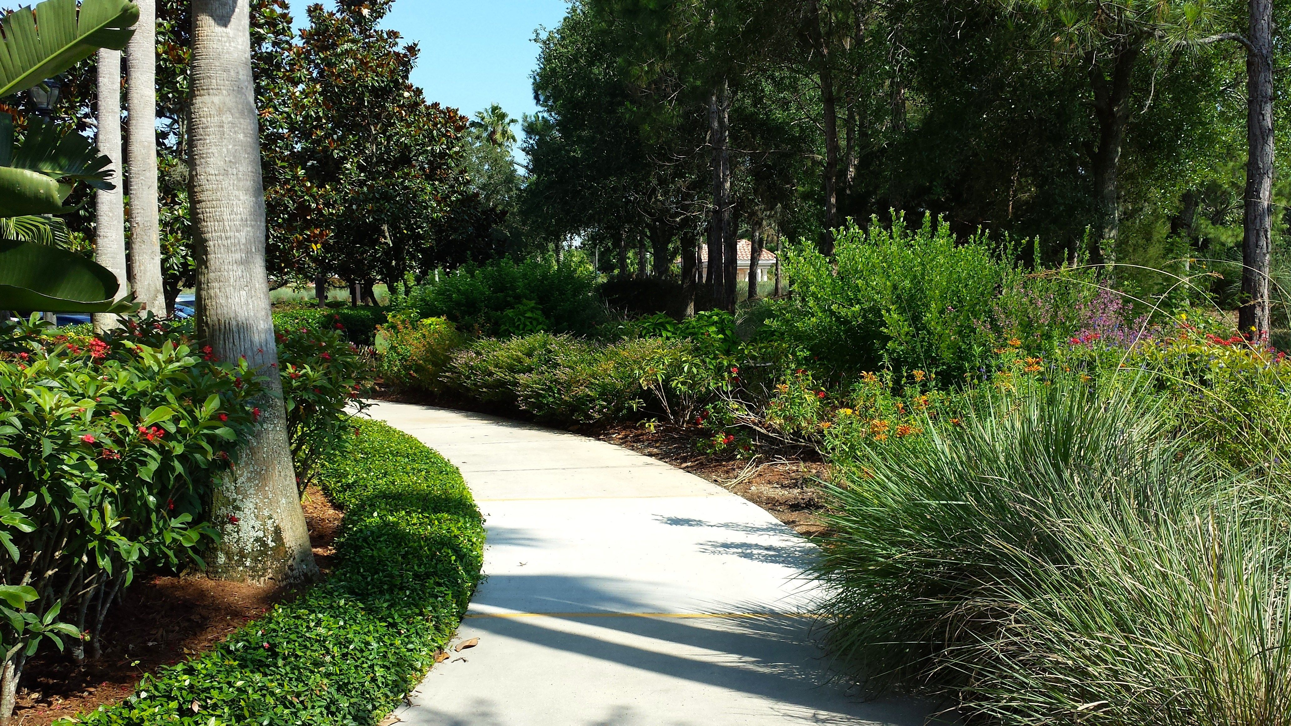 Butterfly Garden Marriott Grande Vista Resort Orlando Florida   Review And  Photo Tour