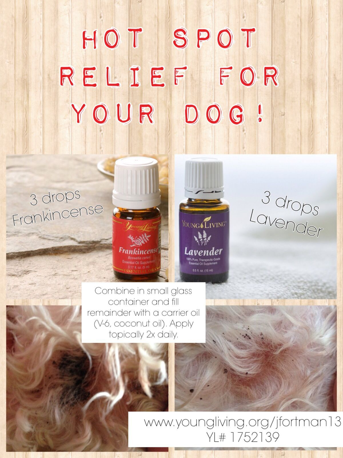 Pin By Erin Lyon On Oils Essential Oils Dogs Oils For Dogs Doterra Essential Oils