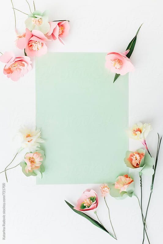Colourful Paper Flowers Arranged With A Green Pastel Background Download This High Resolution Stock Photo By Poster Bunga Bunga Kertas Wallpaper Bunga Iphone