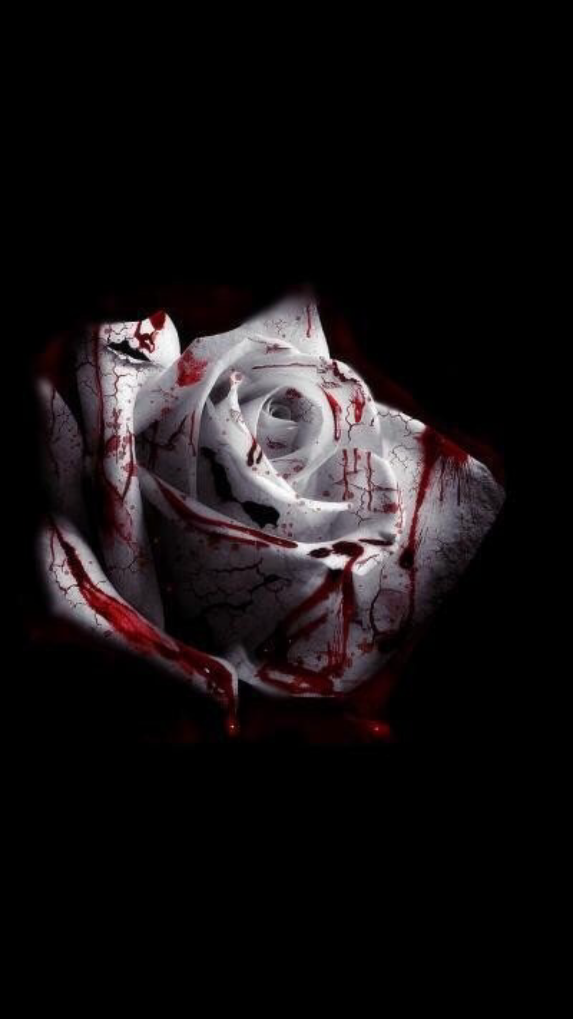 Pin By Rafaela Aliaga On Images Halloween Wallpaper Scary Wallpaper Rose Wallpaper