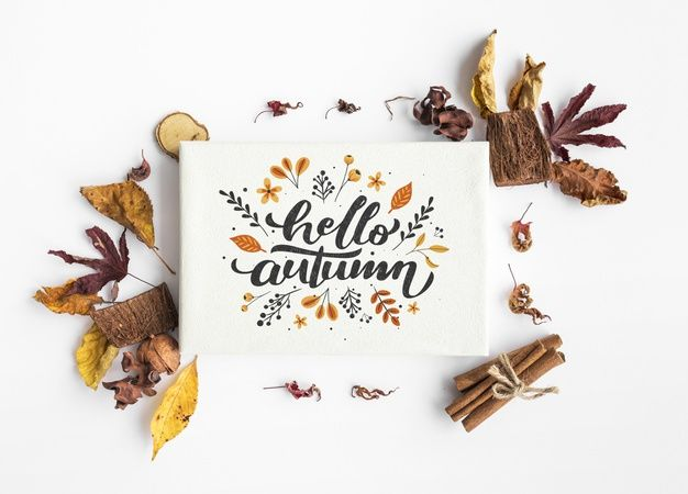 Top view of hello autumn paper and colorful leaves | Premium Psd #Freepik #psd #mockup #paper #nature #autumn #helloautumn