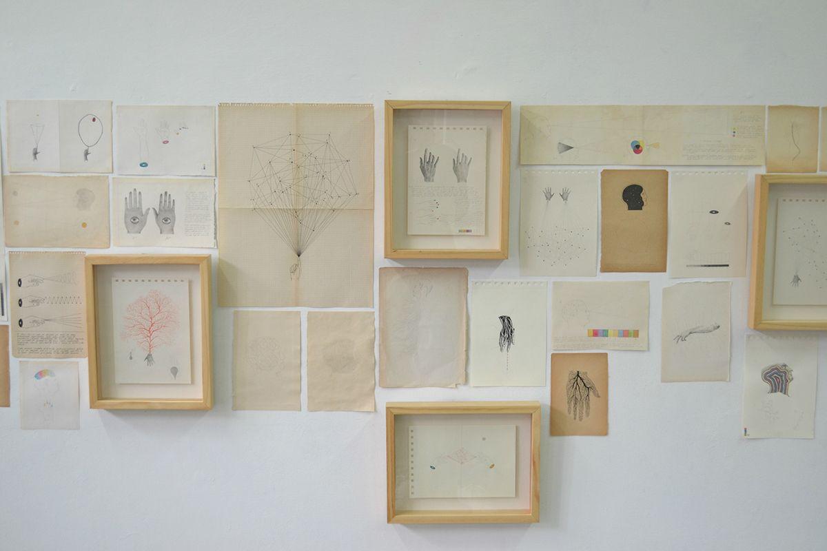 Juan Osorno | montaje | Pinterest | Montajes, Anatomía y Libro de ...