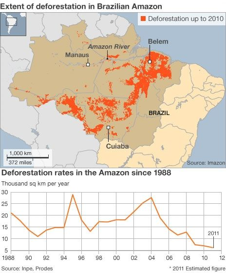 How The Amazon Rainforest Is Being Saved Amazon Rainforest