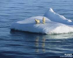 Please do your part to put a stop on global warming