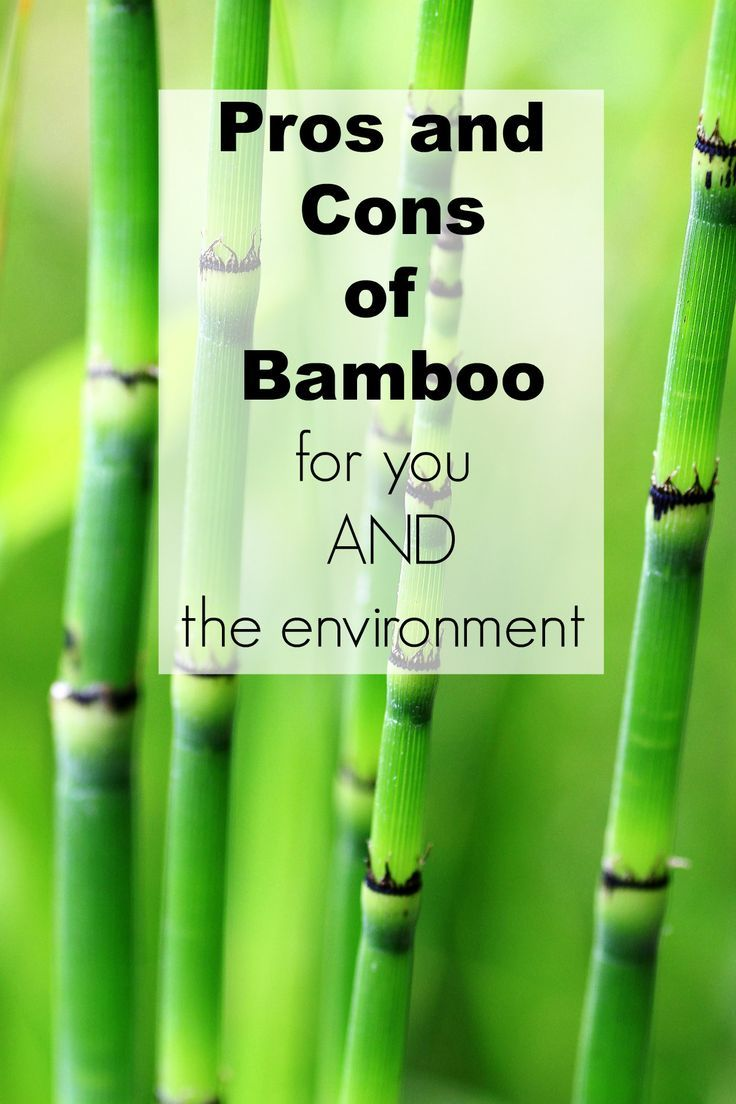 Pros and cons of bamboo for both you and the environment towels
