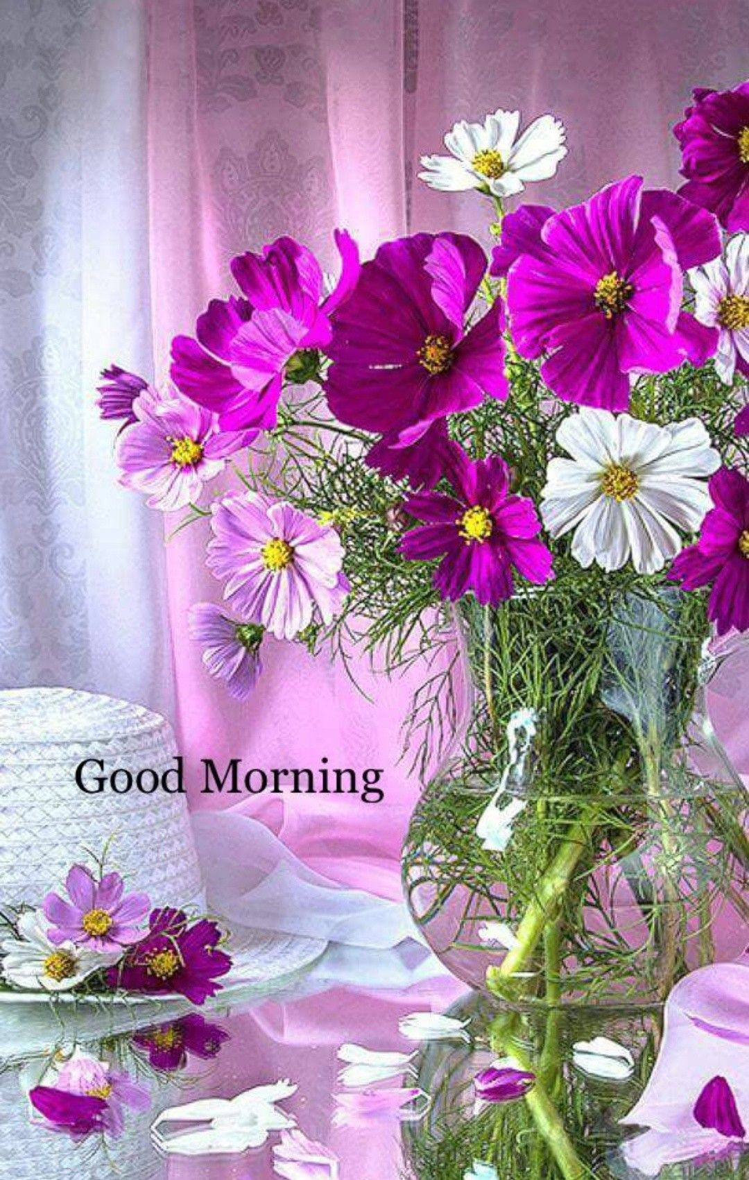 Pin By Wah On Good Morning Wishes Pinterest Morning Greeting