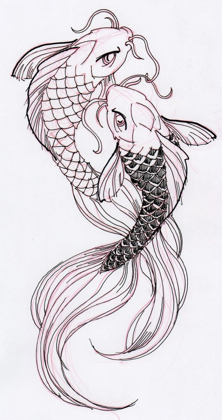 Two cool koi fish ink drawing stuff for school pinterest for Black dragon koi