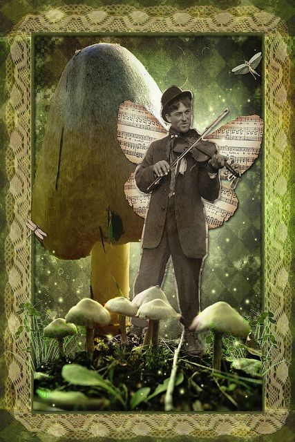 Fairy Fiddler by Róisín NicLochlainn