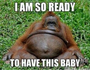 Funny Memes For Pregnant Women : Funny pregnancy stories i threw up because