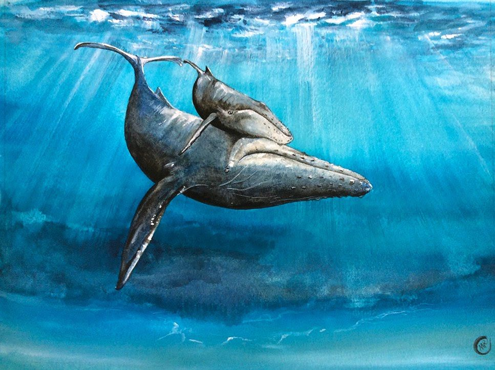 Watercolor Underwater Whale Painting Demonstration Whale