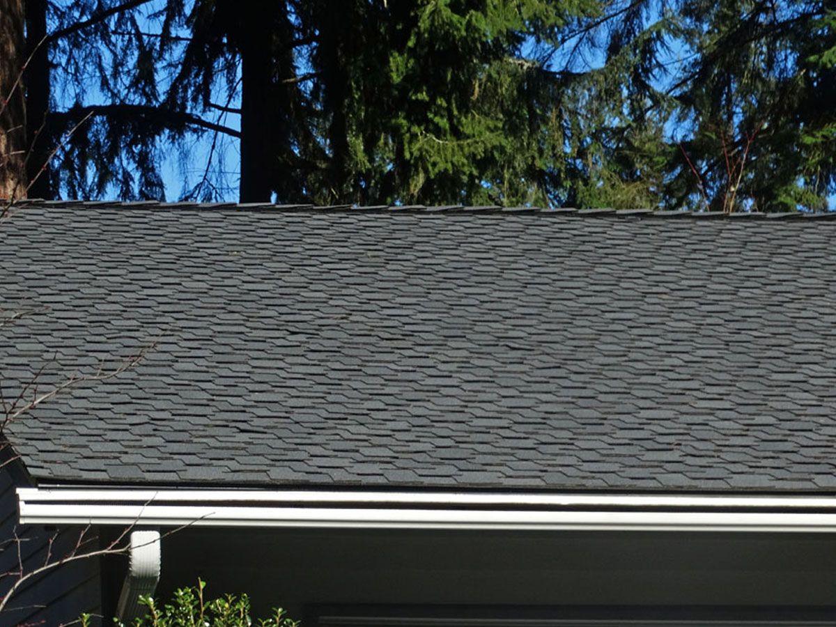 Bellevue Roofing Photos