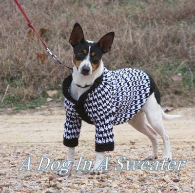 A Dog In A Sweater: dog sweater | Crochet - Pets, ideas | Pinterest