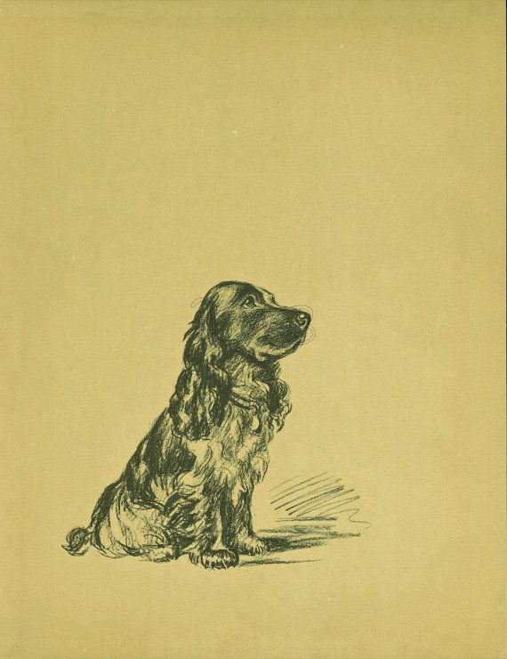 COCKER SPANIEL Dog Print, Puppy Print, Wall Decor, Wall Art, Antique ...