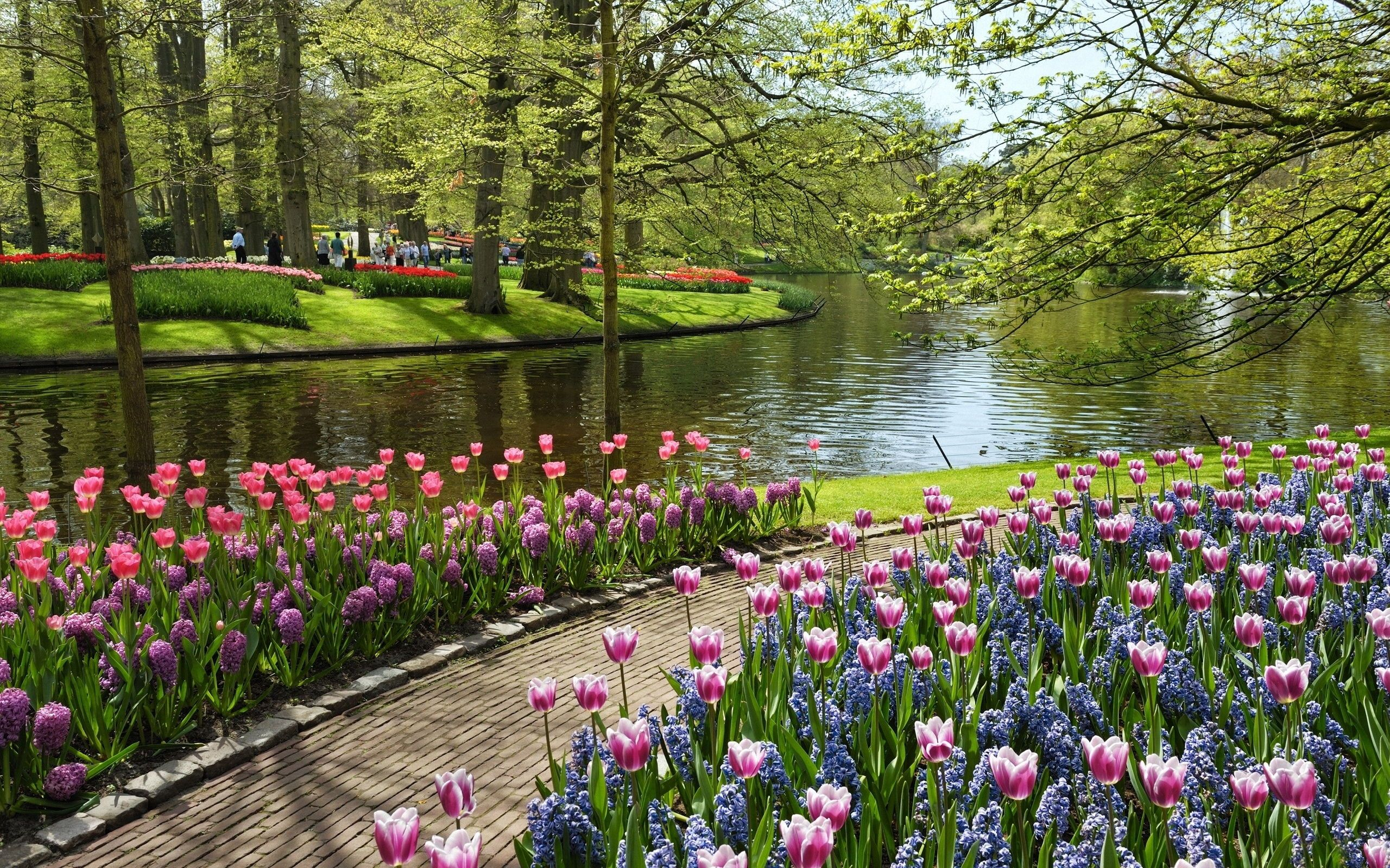 Wallpapers For Gt Beautiful Of Flower Gardens 2560x1600px Most Beautiful Gardens Beautiful Gardens Garden Pictures