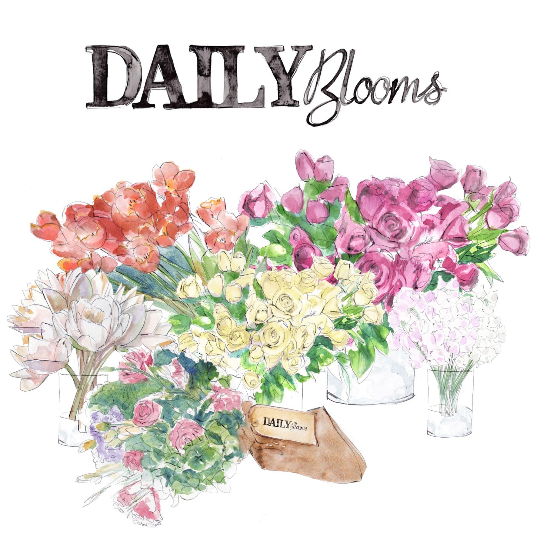 Flower Subscription Weekly/Fortnightly Sydney Flower