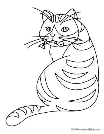 Cat Eating A Fish Coloring Page Nice Cat Drawing For Kids More