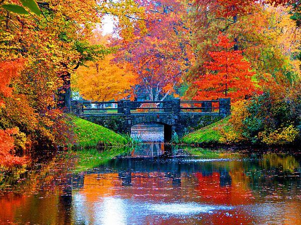 Autumn In Boston | Boston in the fall, New england fall ...