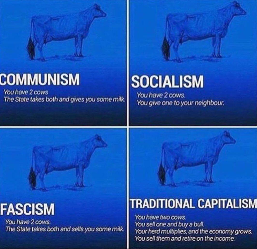43 Cow Economics Ideas Cow Economics You Have Two Cows