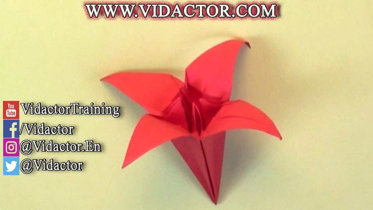 Origami Flower Lily Time Lapse Origami Origamiart Papercraft