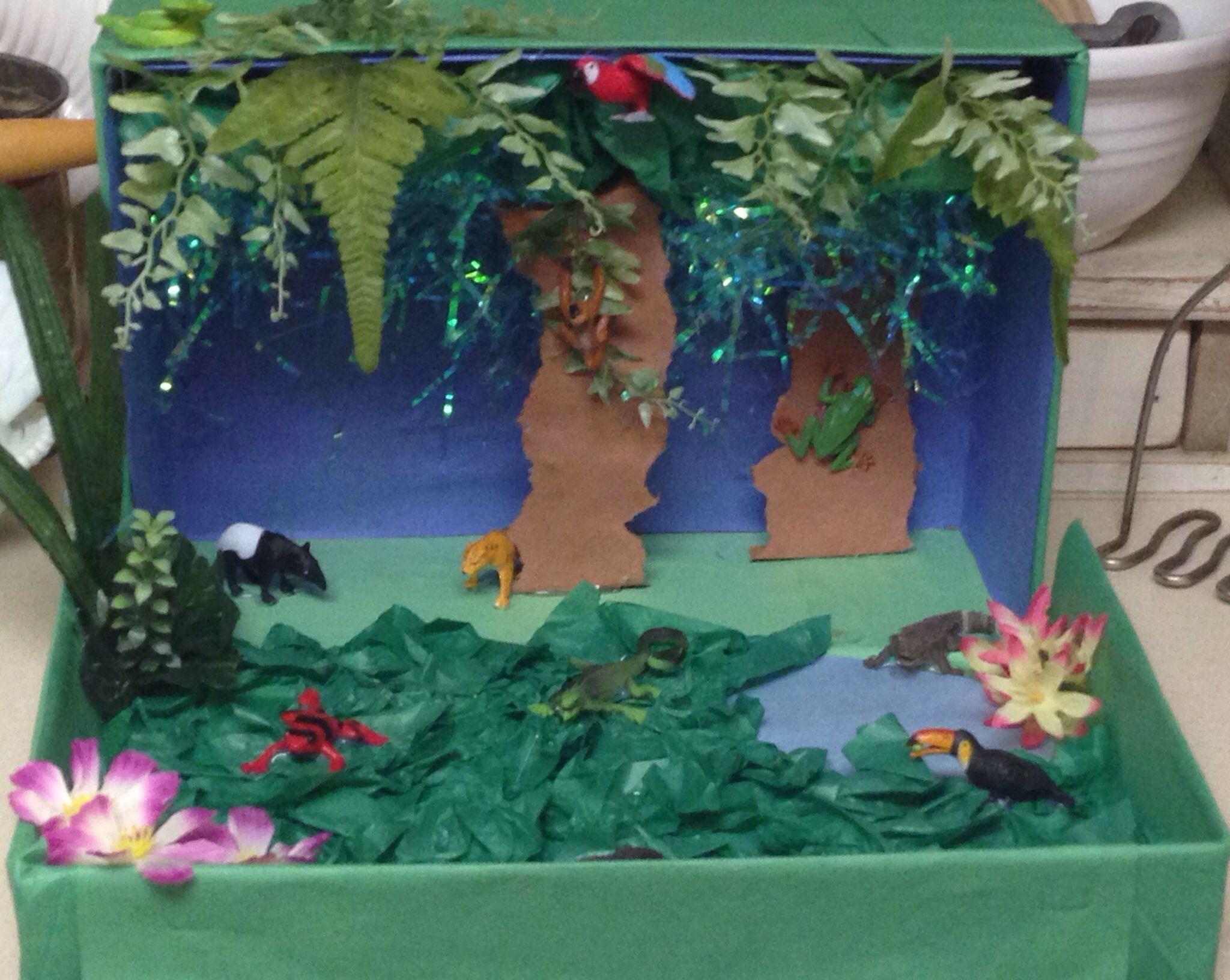 Kids Diorama With Details: Rainforest Diorama