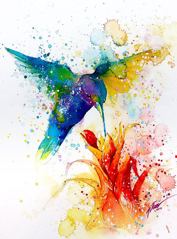 Hummingbird 2 Watercolor Painting A4 A3 Art Print In 2020