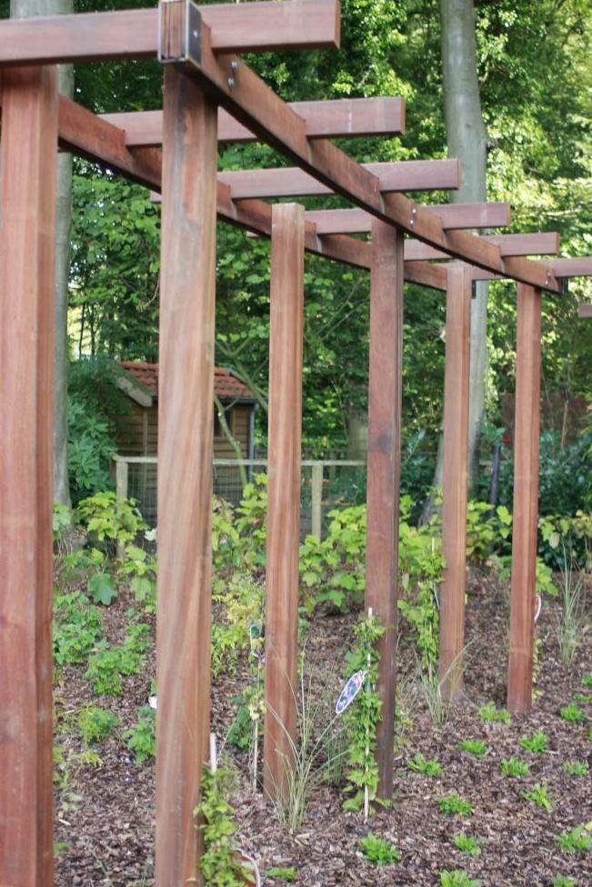 Pergola met klimplanten google zoeken tuin pinterest - Pergola klimplant ...